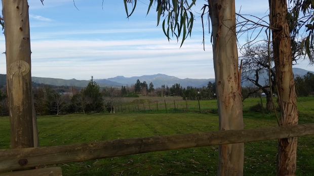chilean-countryside-near-melipilla